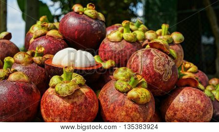 Mangosteens Bunch of fruits, purple mangosteen fruit halved with pulp visible.