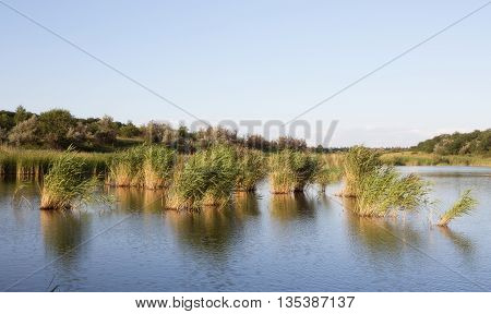 Landscape with lake, forest and blue sky