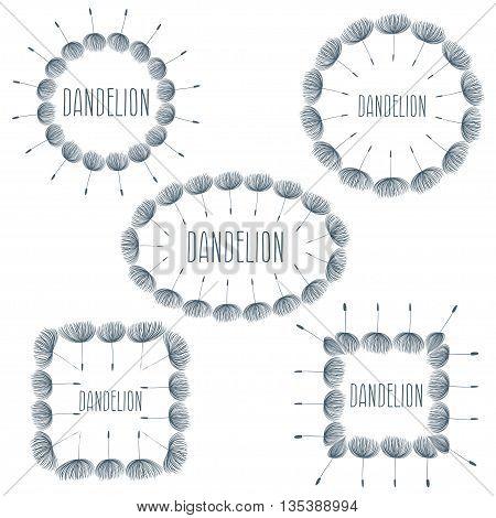 Set of labels fluffy dandelion flower .Vector illustration