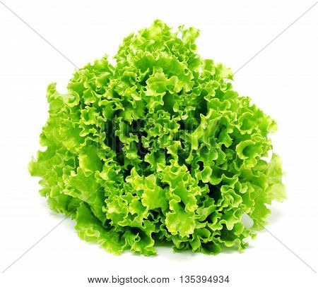 Fresh lettuce leaves isolated on a white background