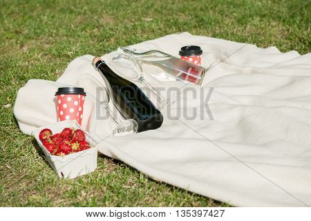 Champagne water bottle and strawberries on white blanket