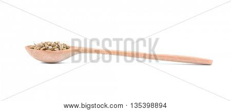 Fennel seeds in spoon on white background
