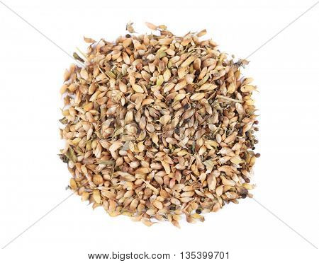 Dried utsho suneli isolated on white