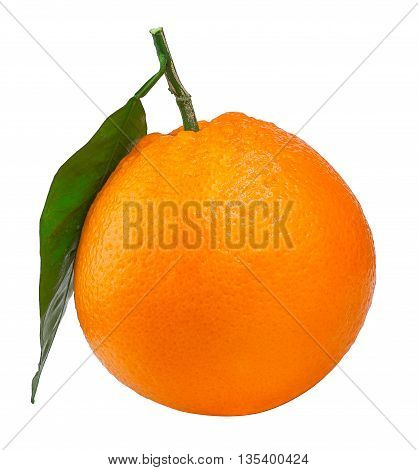 citrus fruit orange with leaf isolated on white background. Orange with leaf. Citrus orange isolated. Citrus