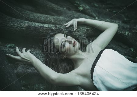 beautiful young woman in a long white dress with long wavy hair lying on the large roots of a tree Fairy tale. Dream