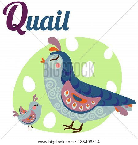 Cute animal alphabet for ABC book. Vector illustration of cartoon quail. Q letter for the Quail