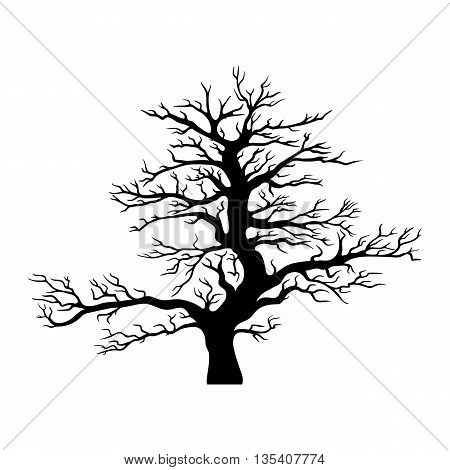 Vector black tree silhouette isolated on white background.