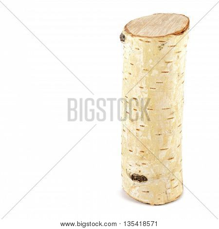 Birch tree log isolated on white background