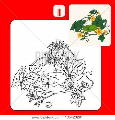 Coloring Book. Coloring book pages with cartoon vector illustration. Cucumber Isolated on White. Flat Design Style.