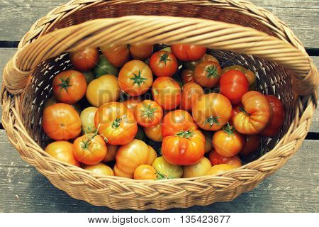 Red tomatoes in basket ( view )