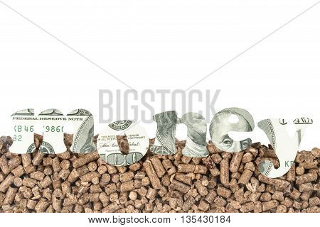 Pressed pallet with of hundred dollar banknotes carved the word money in the foreground with space for text on top isolated on white background