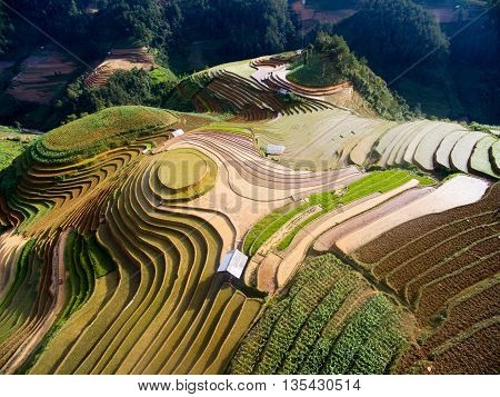 Terraced rice field in water season from above in Mu Cang Chai, Vietnam.