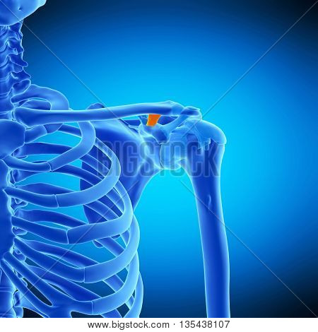 3d rendered, medically accurate illustration of the trapezoid ligament