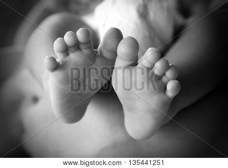 Photo of newborn baby feet in soft focus - black and white
