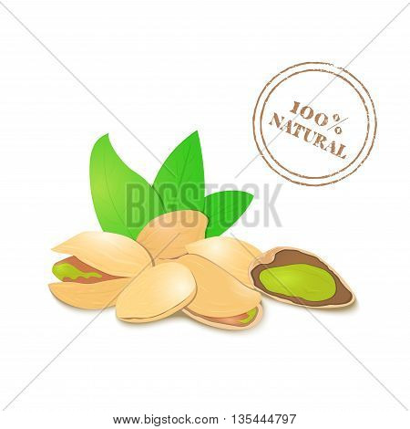 Vector illustration of a handful of pistachio. Pistachio in a shell, shelled half, crushed pistachio leaves. Appetizing, delicious nut image element for design packing food products, healthy eating
