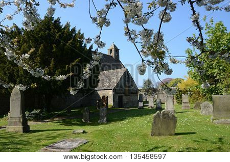 Trees in blossom in an ancient churchyard in Aberdour