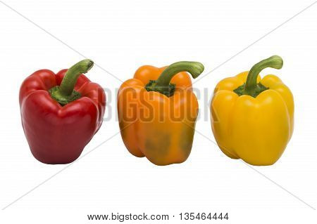 Fresh multicolored peppers standing together in a row on white isolated background