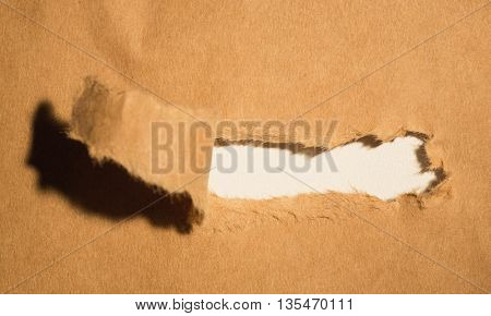 Close-up of damaged brown paper of box