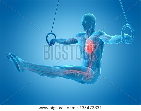 3d rendered, medically accurate 3d illustration of a human athlete
