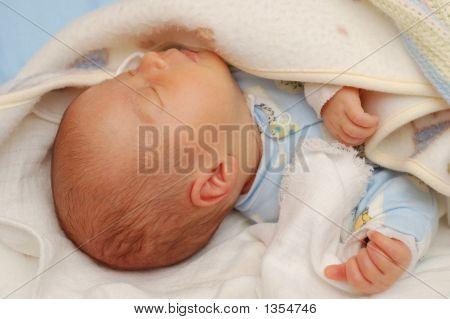 Bebé #7
