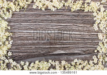 Frame of elderberry flowers on rustic wooden board alternative medicine copy space for text or inscription