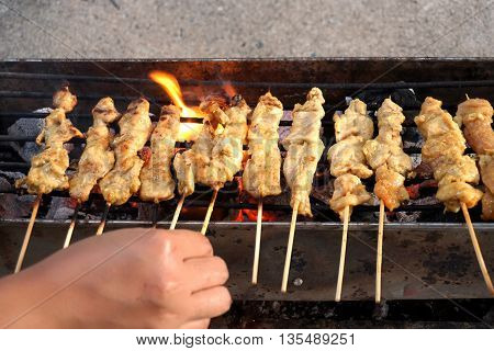 grilled Pork Satay in Thai food style