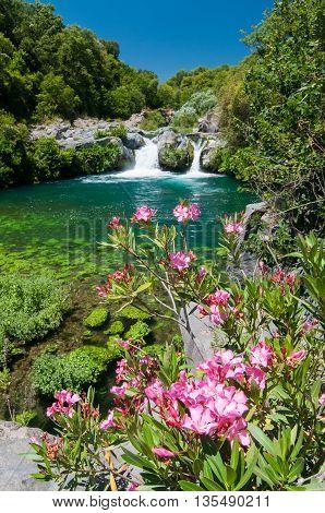 Alcantara River Reserve