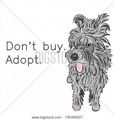 Homeless lonely dog. Adopt. Don't buy. Social problems