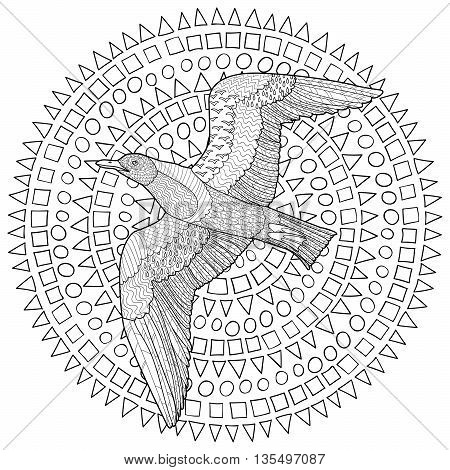 Flying seagull with high details. Adult antistress coloring page. Black white hand drawn doodle oceanic bird. Sketch for tattoo, poster, print, t-shirt in zen tangle style. Vector illustration.