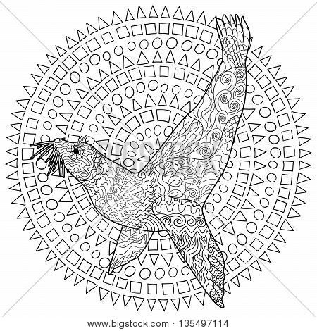 Hand drawn swimming seal with high details for anti stress coloring page, illustration in zendoodle style. Sketch for tattoo, poster, print, t-shirt in zentangle style. Vector.