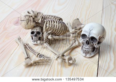 Human Skull And Human Skeleton On Pine Wood Background