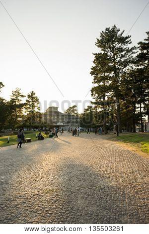 crowded people and deers on pavement in hokkaido japan