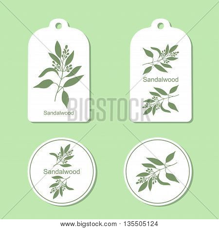 Sandalwood tree branch with flowers silhouette. Vector Illustration. Health and Nature Set of Tags and Labels
