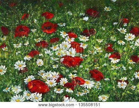 Original oil painting of Opium poppy( Papaver somniferum) and daisy field on canvas.Modern Impressionism