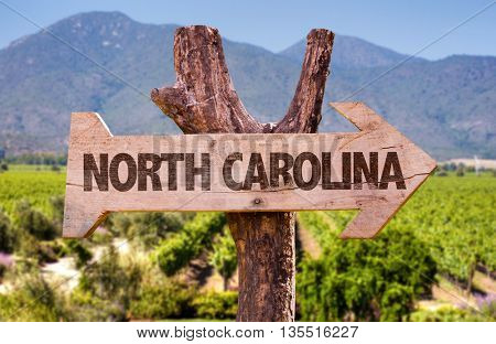 North Carolina wooden sign with landscape background