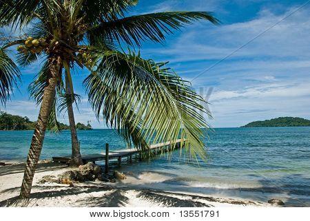 Wooden dock. Bocas del Toro. Panama.