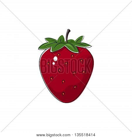 Red Berry Strawberry Isolated on White Background, Fruit Strawberry ,Vector Illustration