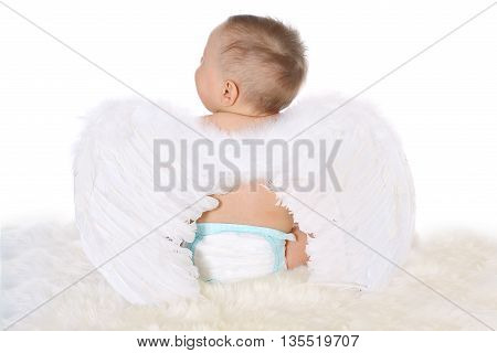 small baby boy with angel wings and diaper sitting back on fur, white background, isolated