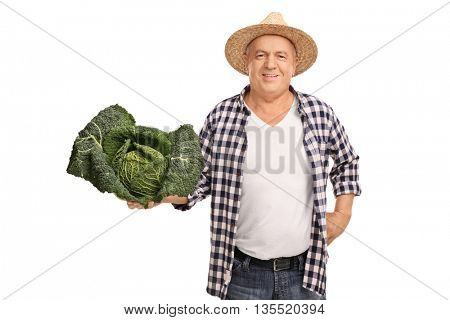 Mature agricultural worker holding a big piece of Savoy cabbage isolated on white background
