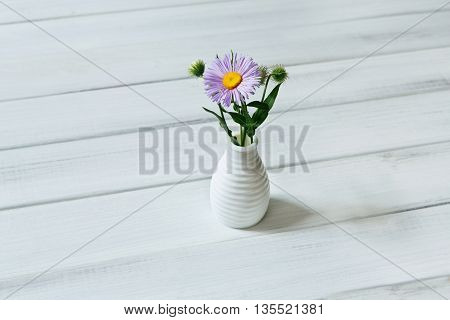 Aster amellus bouquet in ceramic vase at wooden table. White rustic wood with purple flowers