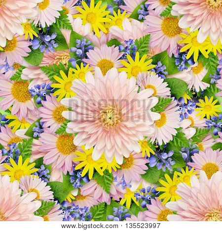 Aster and wild flowers seamless pattern for background