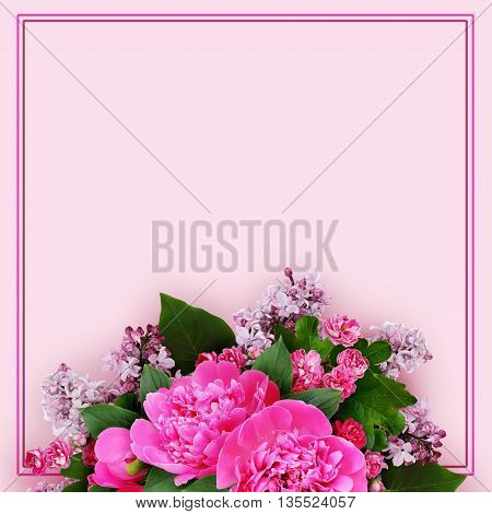Pink peony hawthorn and lilac flowers arrangement on pink background