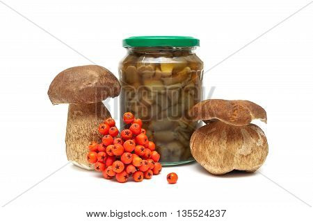 forest mushrooms and a bunch of red rowan on a white background. horizontal photo.