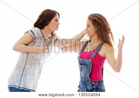 Two furious women fighting and screaming