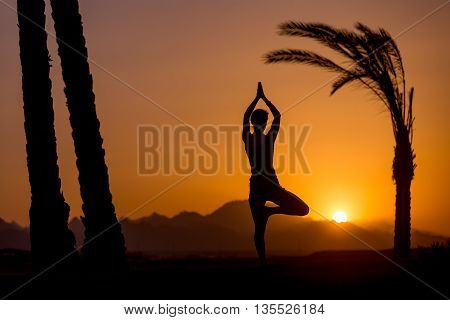 Yoga Vrikshasana Pose In Tropical Location