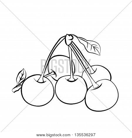 Vector monochrome illustration of Five ripe cherries with leaf