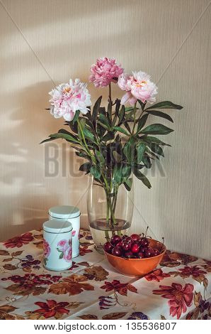 Still life with a fresh bunch bouquet of white, pink peonies in a glass vase, dark cherries on a table, vintage tablecloth with print blossom flowers and fuit, marsala color. Rustic style. Floral scene on beige background with sunshine.