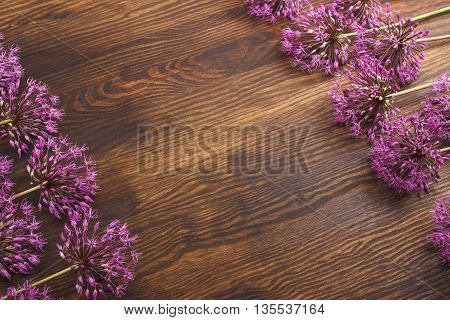 Many  violet flowers on the wooden background