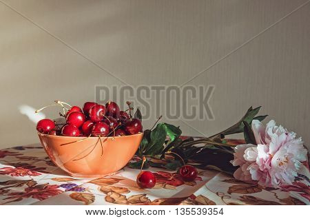 Fine art, Still life composition with a fresh pink peony flower, red marsala cherries on a table with vintage tablecloth. Blossom floral and fruit. Rustic style on beige background with sunlight. Beauty natural, Home decor. Place for text.