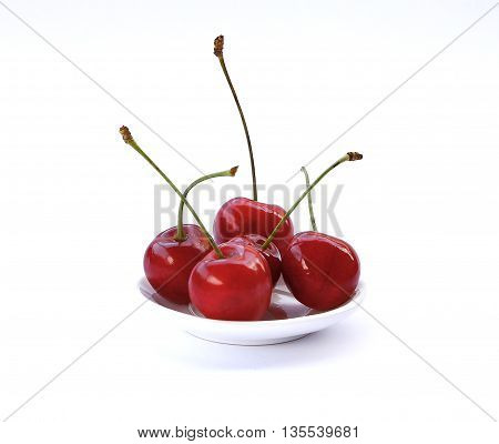 Beautiful Cherry Tree On A White Background